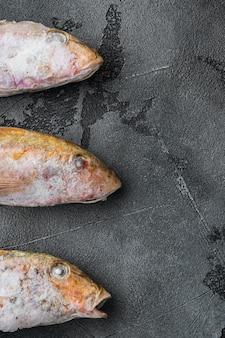 Set di pesce crudo congelato di capra, su sfondo di tavolo in pietra grigia, vista dall'alto piatta, con spazio per la copia