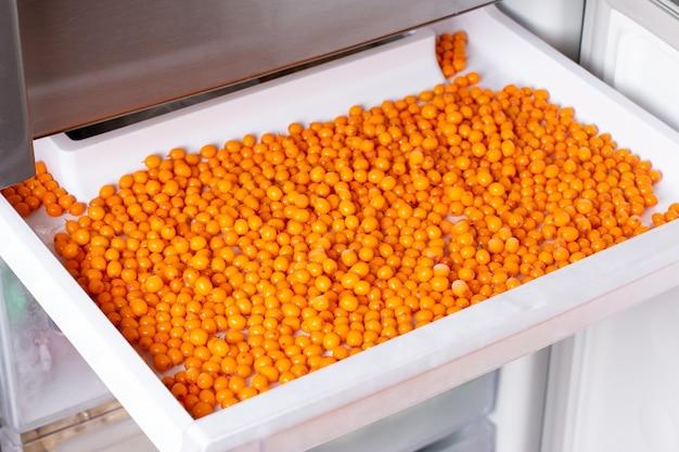 Olivello spinoso congelato. bacche congelate nel congelatore. dispensa