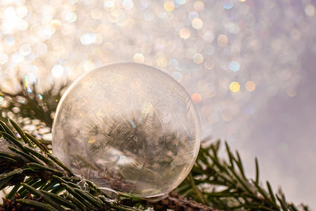 Primo piano congelato della bolla di sapone su un ramo di abete rosso