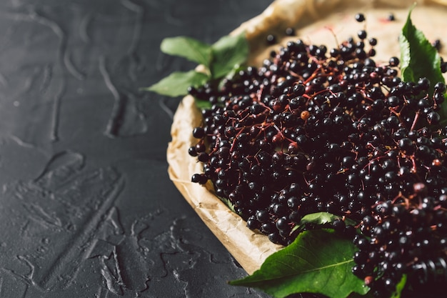 Sambuco nero di frutta su uno sfondo scuro. (sambucus nigra). sfondo di bacche di sambuco nero europeo.