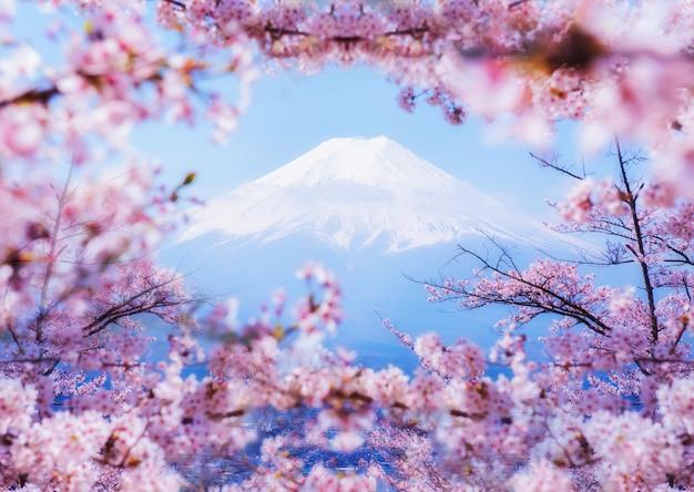 Paesaggio montano del fuji. viaggi e visite turistiche in giappone in vacanza. sakura fiore in primavera e in estate.