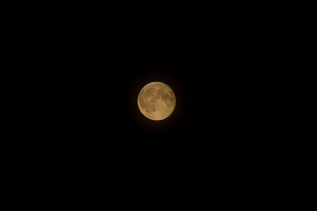 Luna gialla piena su un cielo nero puro. fase di luna piena, crateri visibili. mosca, russia. avvicinamento.