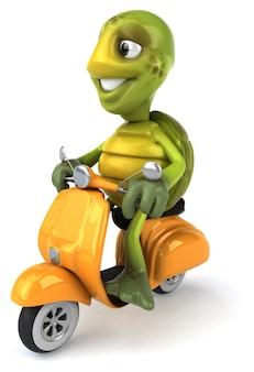 Divertente animazione tartaruga