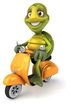 Tartaruga divertente