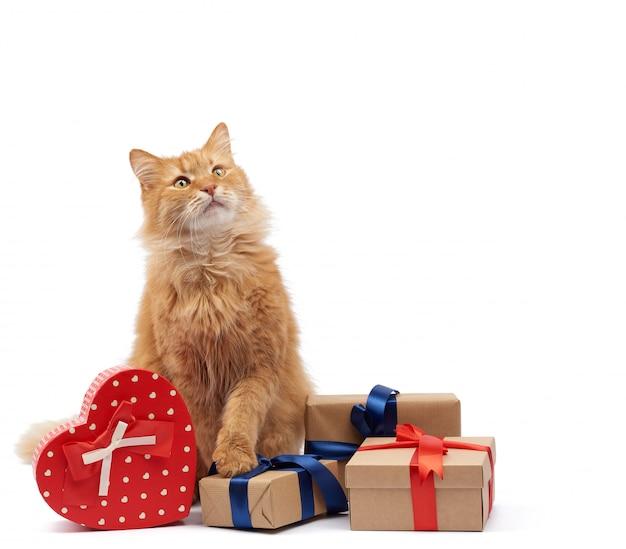 Gatto divertente dello zenzero adulto che si siede in mezzo alle scatole avvolte in carta marrone e legate con nastro di seta, regali