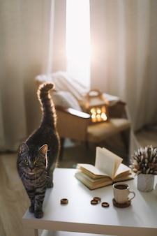 Gatto divertente e natura morta autunnale con tazza da caffè libro e fiori