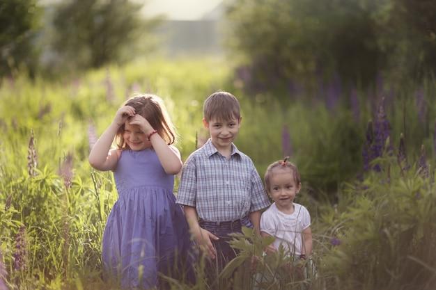 Bambini divertenti che giocano nell'erba nel parco