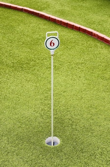 Campo da gioco mini golf buca 6