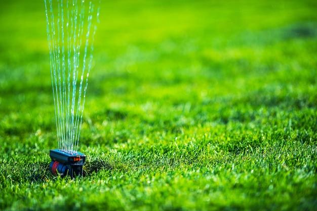 Spruzzatore del campo di erba del giardino. sistemi di irrigazione del prato inglese.
