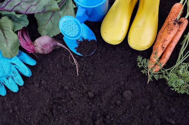 Attrezzi da giardino con verdure sul terreno