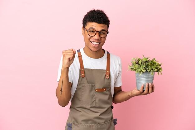 Giardiniere africano che tiene una pianta isolata su sfondo rosa che celebra una vittoria nella posizione del vincitore