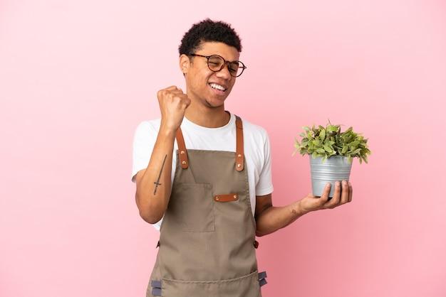 Giardiniere africano che tiene una pianta isolata su sfondo rosa che celebra una vittoria