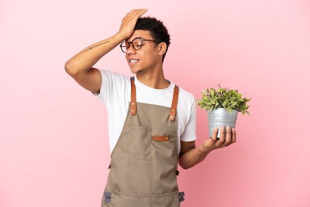 L'uomo africano giardiniere che tiene una pianta isolata su sfondo rosa ha realizzato qualcosa e intendeva la soluzione