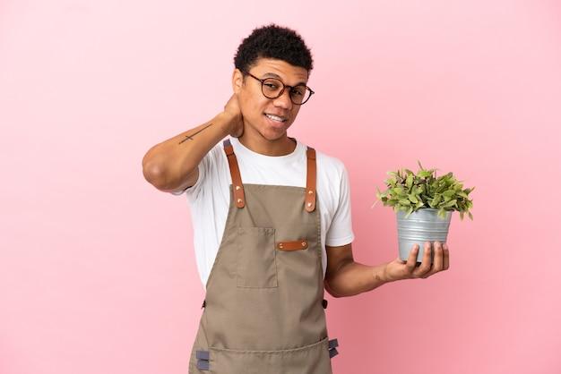 Giardiniere uomo africano che tiene una pianta isolata su sfondo rosa ridendo