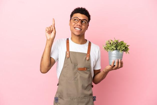 Giardiniere uomo africano che tiene una pianta isolata su sfondo rosa che indica una grande idea