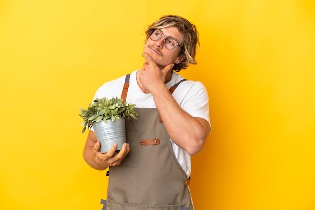 Uomo biondo giardiniere che tiene una pianta isolata avendo dubbi