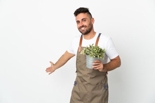 Giardiniere uomo che tiene una pianta su sfondo bianco isolato estendendo le mani di lato per invitare a venire