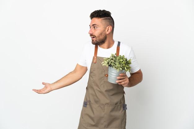 Uomo del giardiniere che tiene una pianta sopra fondo bianco isolato con l'espressione di sorpresa mentre guarda il lato