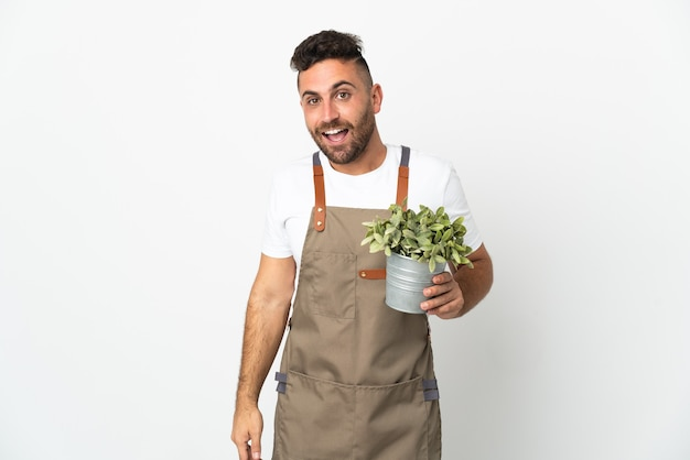 Uomo del giardiniere che tiene una pianta sopra fondo bianco isolato con l'espressione facciale di sorpresa