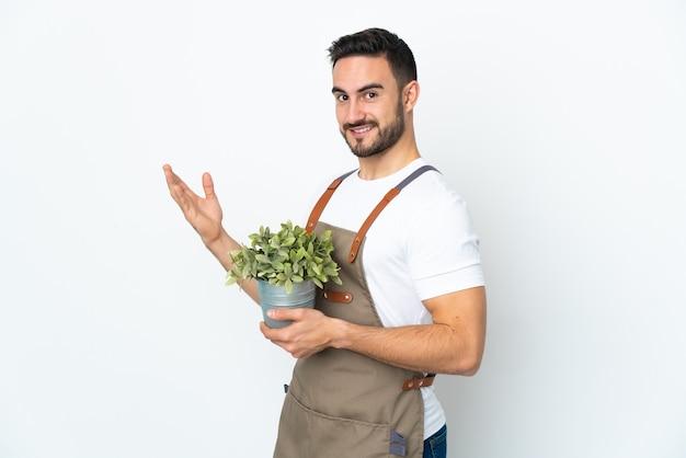 Uomo del giardiniere che tiene una pianta isolata sulla parete bianca che estende le mani a lato per invitare a venire