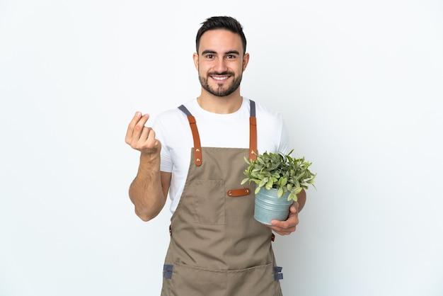 Uomo del giardiniere che tiene una pianta isolata sulla parete bianca che fa il gesto dei soldi