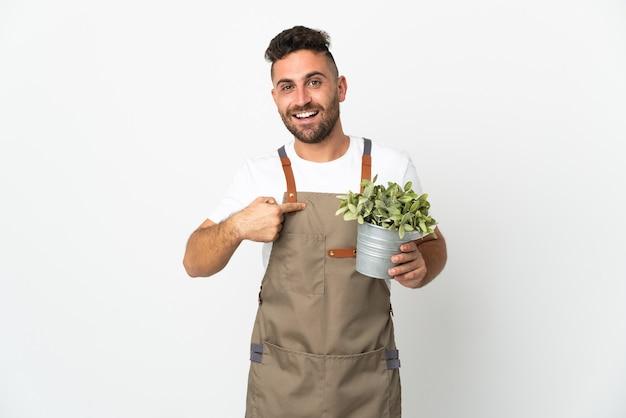 Uomo del giardiniere che tiene una pianta sopra la parete bianca isolata con l'espressione facciale di sorpresa