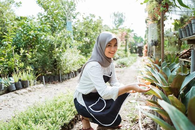 Giardiniere al lavoro, prenditi cura delle piante verdi