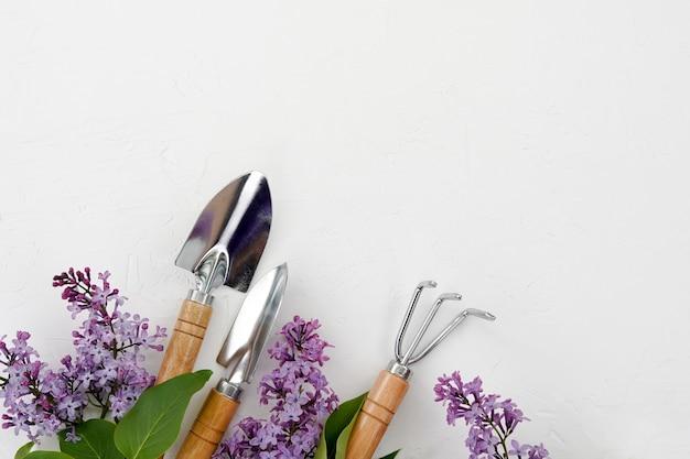 Attrezzi da giardinaggio e fiori lilla su sfondo bianco, copia dello spazio