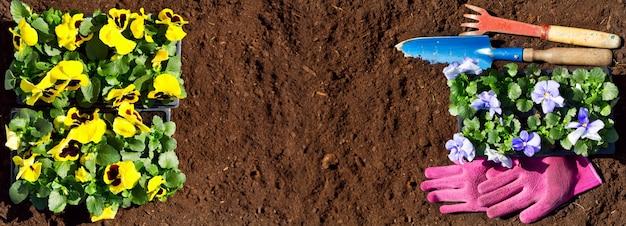 Attrezzi da giardinaggio e fiori sul fondo del suolo, vista dall'alto
