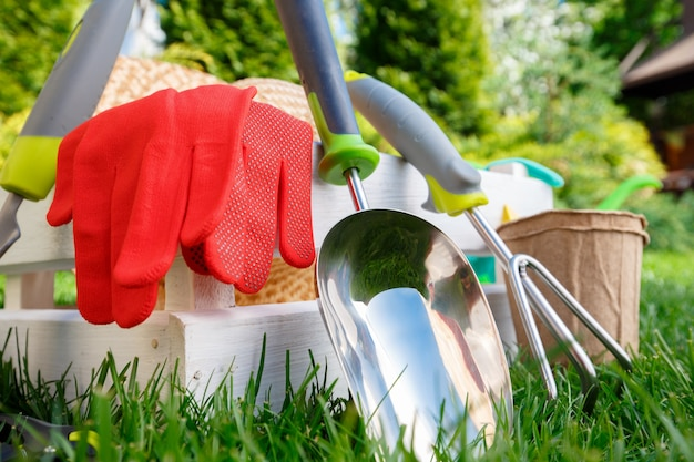 Attrezzi da giardinaggio e utensili su prato verde, manutenzione del giardino e concetto di hobby.