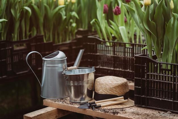 Attrezzi da giardinaggio, annaffiatoio e cappello di paglia sul fondo del suolo