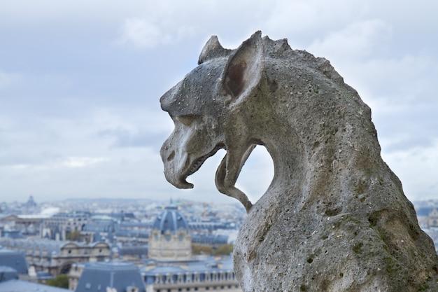 Gargoyle della chiesa cattedrale di notre dame, parigi, francia