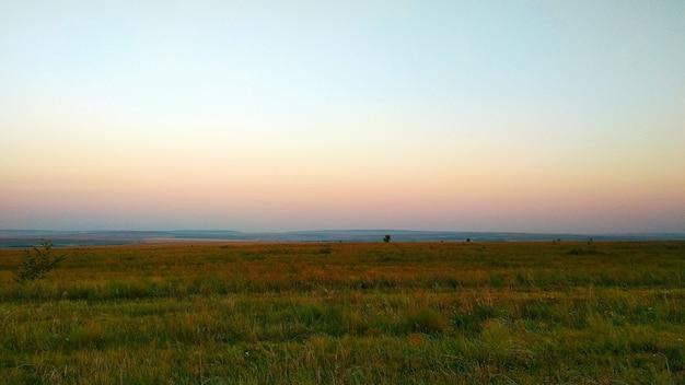 Dolce alba rosa nella steppa