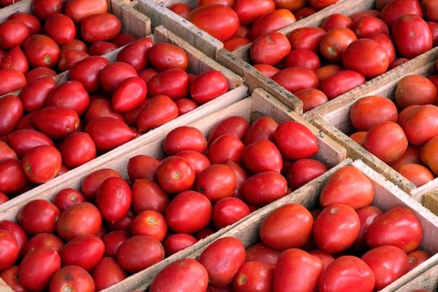 Composizione geometrica con cassette di pomodori alla bancarella del mercato all'ingrosso. città di san paolo, brasile