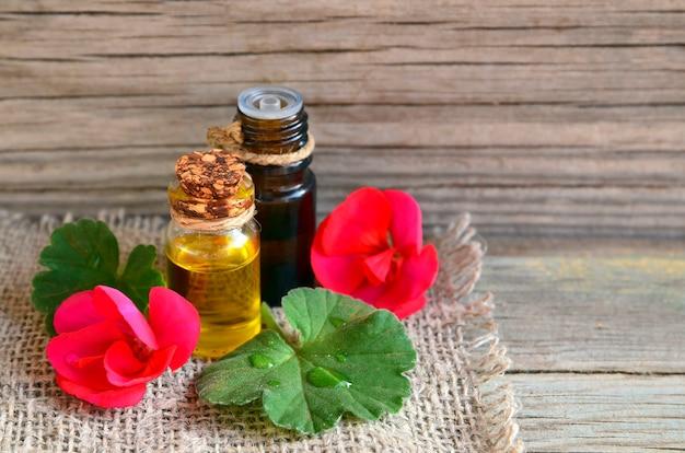 Olio essenziale di geranio in una bottiglia di vetro con fiori e foglie della pianta di geranio. olio di geranio per spa, aromaterapia e cura del corpo. estrarre olio di geranio.