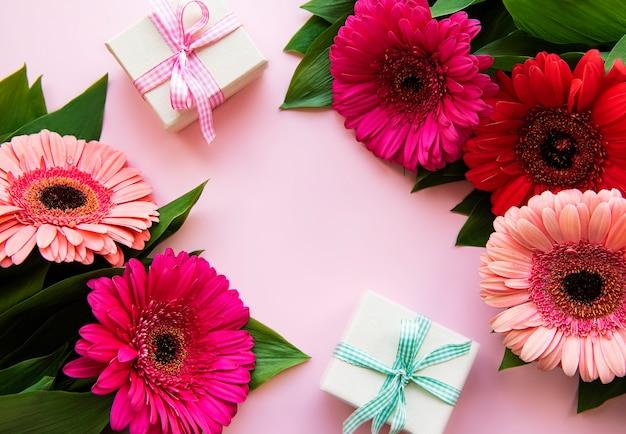 Gerbera fiori e scatole regalo su uno sfondo rosa. vista dall'alto