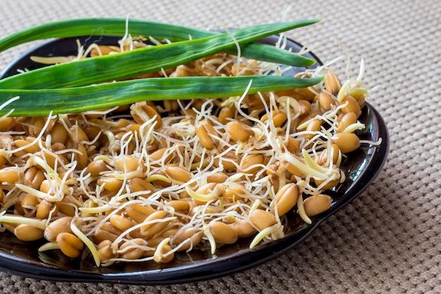 Chicchi di grano germinati, cibo sano, stimolazione delle viscere