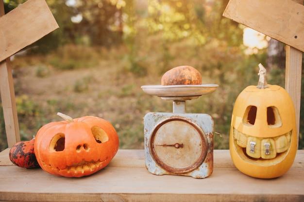 Zucche fantasma di halloween