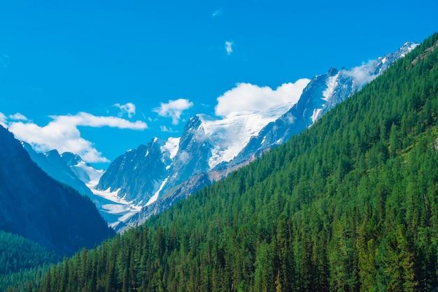 Ghiacciaio gigante in una giornata di sole. cresta rocciosa con neve dietro le montagne con copertura forestale di conifere.