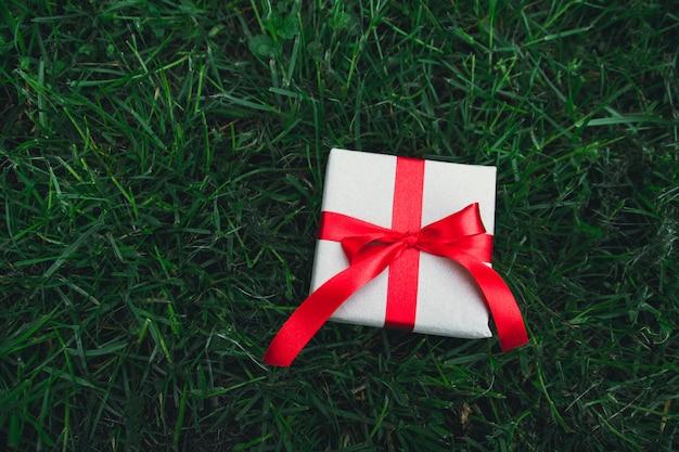 Contenitore di regalo sulla priorità bassa dell'erba verde