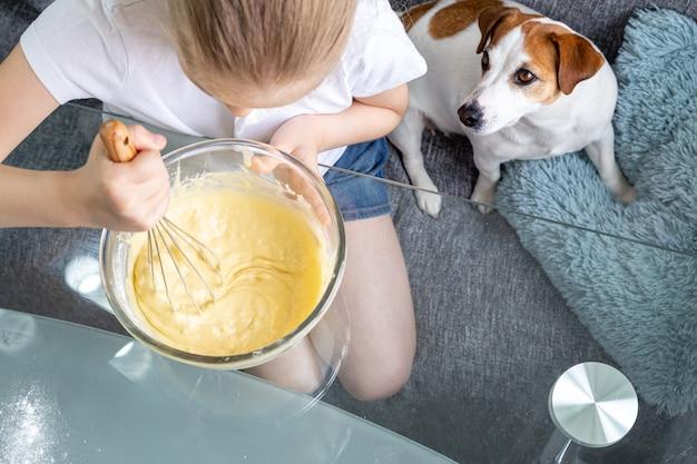 Una ragazza batte l'impasto con una frusta in una ciotola di vetro e accanto a lei siede un cane affamato jack russell.