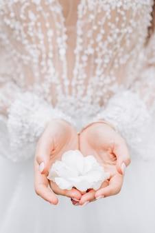 La ragazza la sposa tiene un fiore bianco nelle sue palme delicate