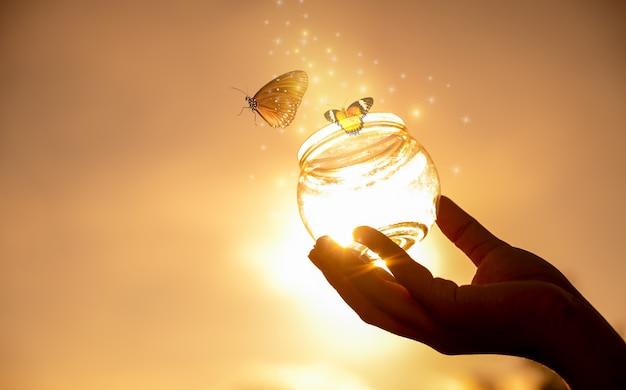 La ragazza libera la farfalla dal barattolo, momento blu dorato concetto di libertà