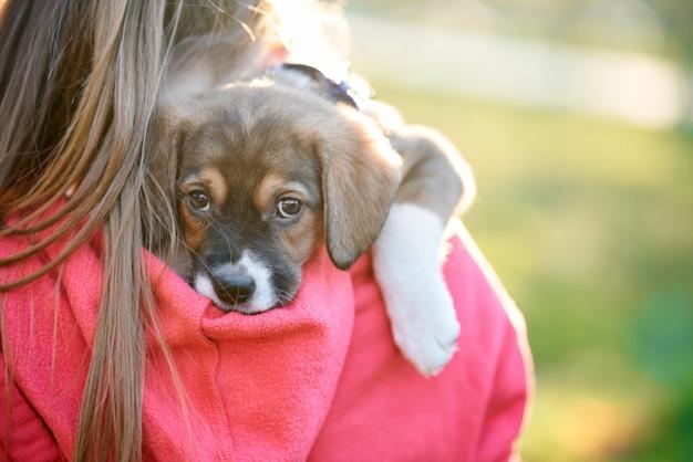 Ragazza che tiene cucciolo carino marrone.