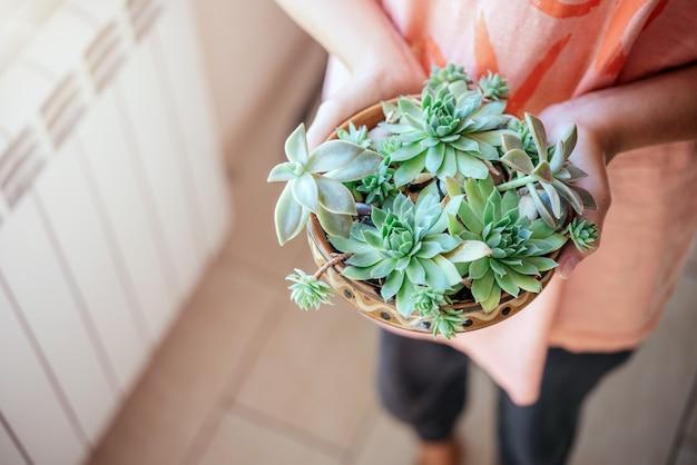 Una ragazza con diversi tipi di piante grasse nel vaso