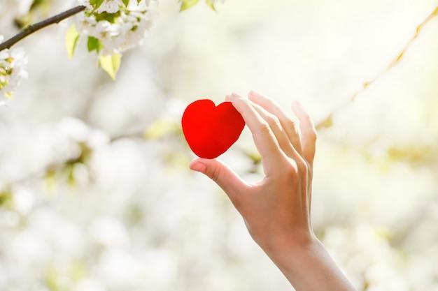 La ragazza tiene un cuore rosso in mano nella natura