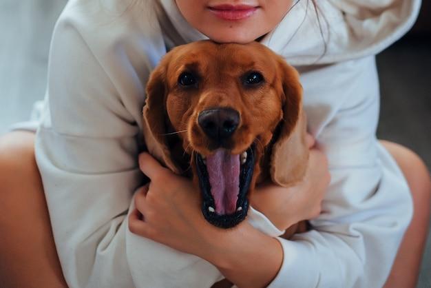 La ragazza ha abbracciato il cane cocker spaniel, il cane sbadiglia