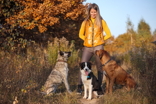 La ragazza sta allevando tre cani: border collie, rhodesian ridgeback e hollandse herder