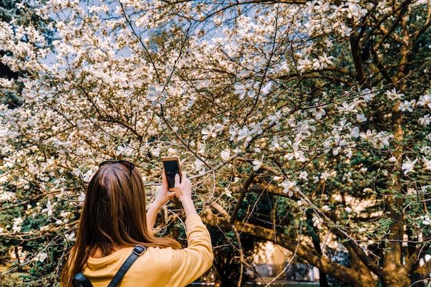 La ragazza fa la foto del fiore della magniloa sulla macchina fotografica dello smartphone. social media