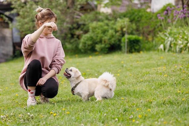 La ragazza gioca con un cane uno spaniel tibetano su un prato verde